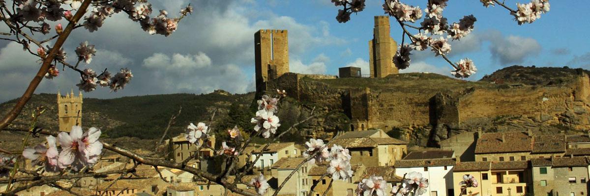 Vista de Uncastillo con los almendros en flor